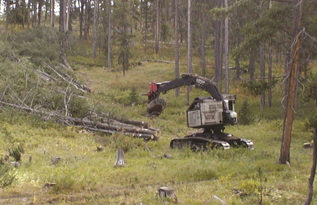 Use of a feller-buncher and directional felling can help minimize soil disturbance in the SMZ.