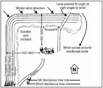 Typical dense farmstead windbreak for north to west winter wind direction. Snowdrift will move downwind and be shallower with less density.