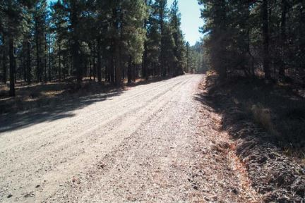 Managing Forests for Water Quality: Forest Roads
