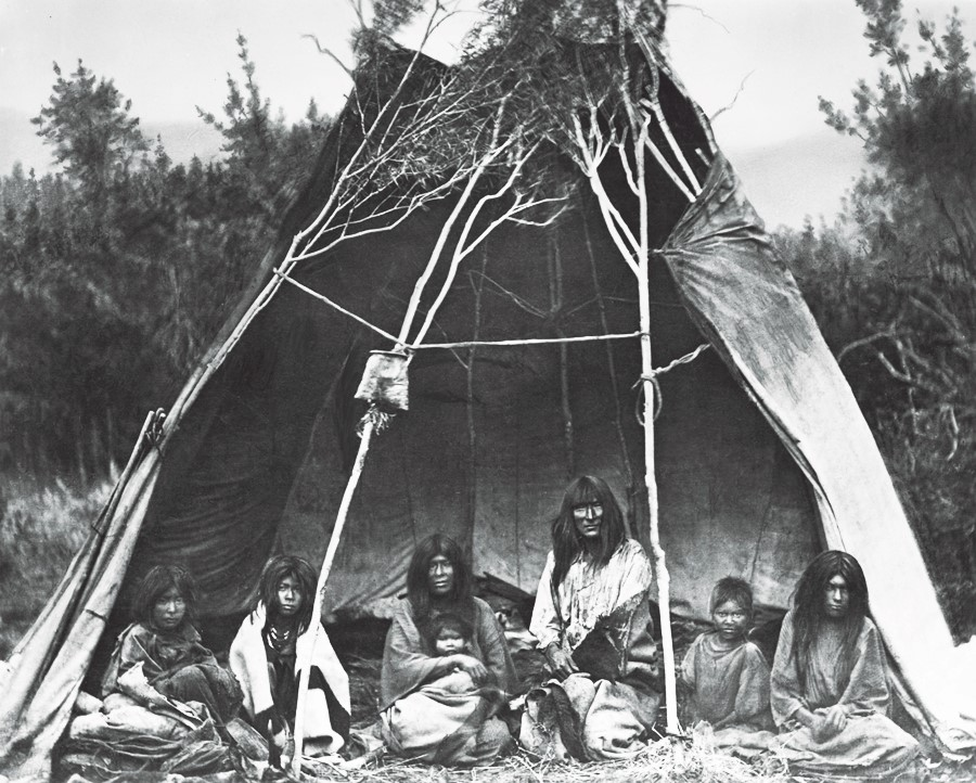 Bannock family uses young saplings to support their tepee at a camp in Idaho