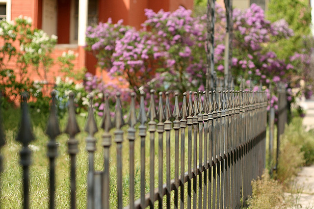 Sharp-tipped fence