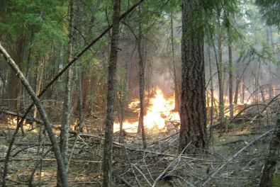 Prescribed Fire on Public Lands