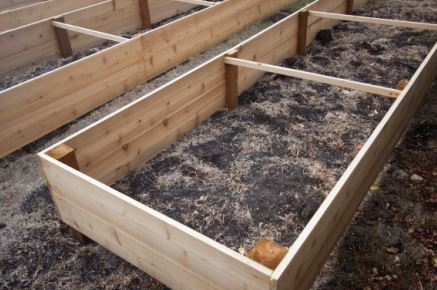 Raised bed boxes can be an alternative for gardens with heavy clay soils