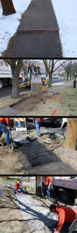 Site selection, excavation, preparation and installation. This sidewalk is located about a block west of 1600 east at 1385 North in Logan.