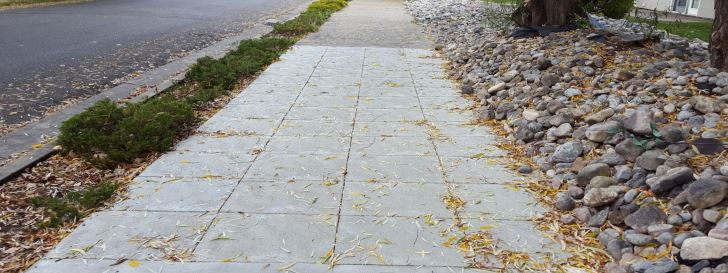 Tree/Sidewalk Conflicts: One Way to Save Trees - 030