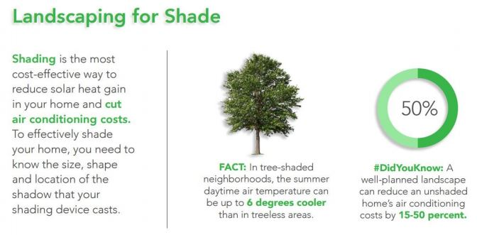Landscaping for shade infographic. Credit: The Department of Energy