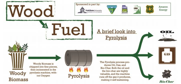 Figure 2. Production of bio-oil, bio gas and biochar by pyrolysis | Graphic credit: Darren McAvoy