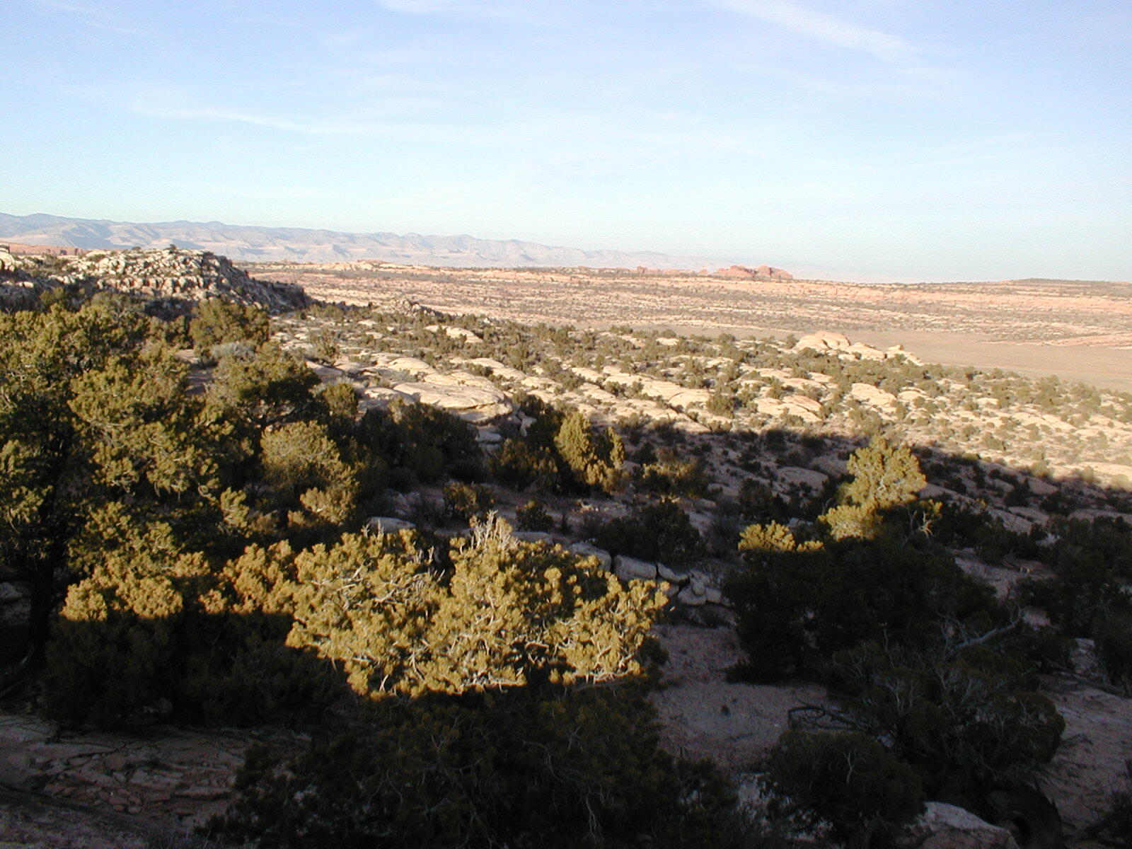 042 - Pinyon-Juniper Ecology and Management