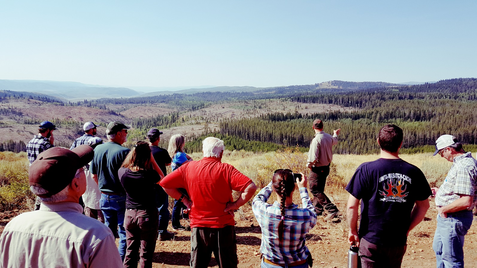 forestry tour group