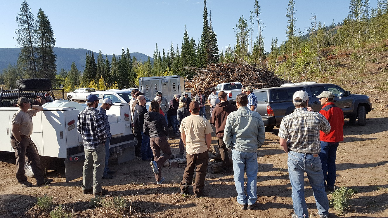 Forestry Practices Tour Group at Beaver Creek Timber Sale