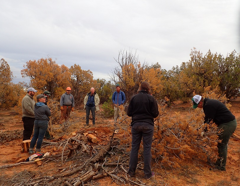Field tour group discusses soil conditions